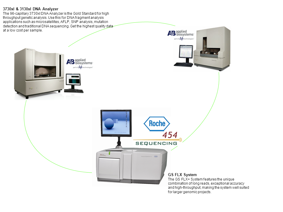 Capillary and Next Generation Sequencing / platform